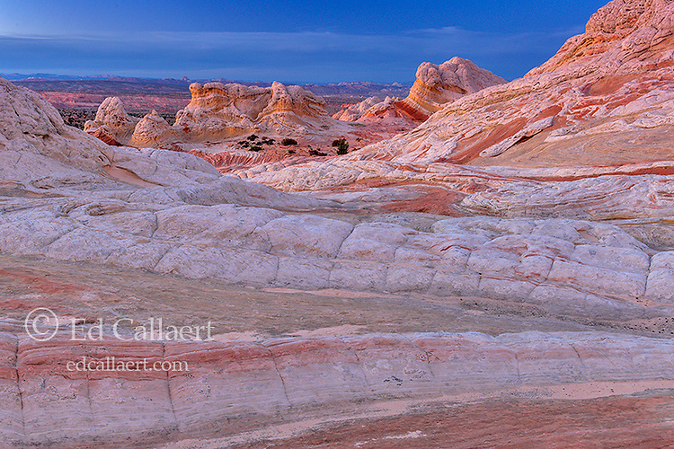 Dusk, Sandstone Bluffs, White Pocket, Vermillion Cliffs National Monument, Paria Plateau, Arizona