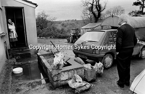 Puppy Farming Wales 1989.<br />