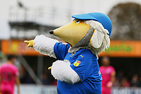 AFC Wimbledon mascot, Haydon during AFC Wimbledon vs Rochdale, Sky Bet EFL League 1 Football at the Cherry Red Records Stadium on 5th October 2019