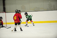 Framingham Beavers vs Brookline Red