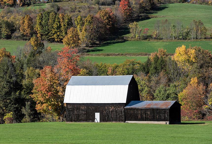 Rural barn with tin roof, Covington, New York, USA