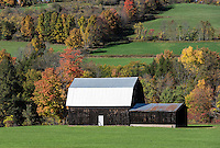 Rural barn with tin roof, Covington, New York, USA