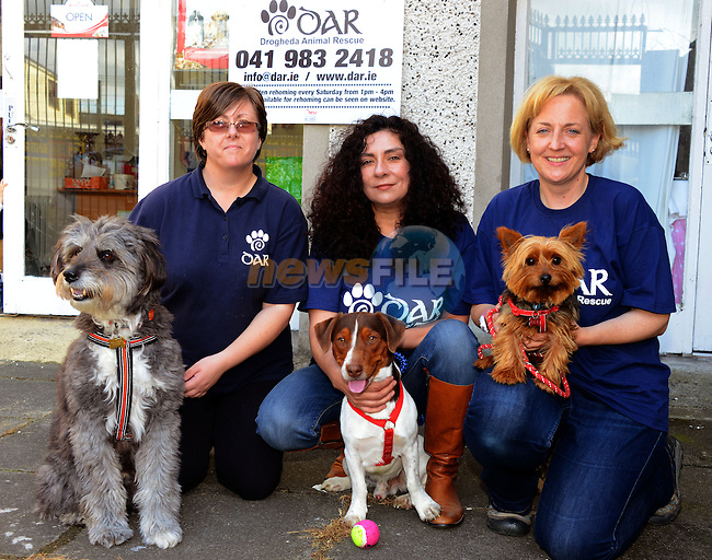 Linda O'Driscoll, Lisa Martinez and Liz Doran with dogs Coco, Jasper and Rodney at Drogheda Animal Rescue.