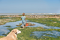 A boy carrying a fishing net heads out across the rock pools with his dog in tow.