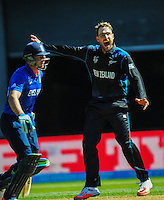 Daniel Vettori appeals as Jos Buttler prepares to run during the ICC Cricket World Cup one day pool match between the New Zealand Black Caps and England at Wellington Regional Stadium, Wellington, New Zealand on Friday, 20 February 2015. Photo: Dave Lintott / lintottphoto.co.nz
