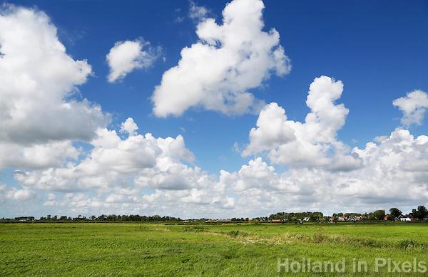 Nederland Westzaan. 2016. Weilanden in Westzaan. Foto Berlinda van Dam / Hollandse Hoogte