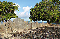 Ahu or altar of the Marae Hauviri or Marae Taura'a-a-tapu, family temple of the Tamatoa clan, at Taputapuatea, at Te Po, in the Opoa valley, on the island of Raiatea, in the Leeward Islands, Society Islands, French Polynesia. This marae holds the Te-Papa-tea-o-Ruea, or white investiture stone, brought by the god Hiro to found the chiefdoms or ari'i on Raiatea. Hauviri was the welcoming marae which received visitors as they disembarked from their canoes. This site was a meeting place and sacrificial site for travellers from all over the Pacific. Picture by Manuel Cohen
