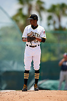 GCL Pirates pitcher Starlyn Reynoso (67) during a Gulf Coast League game against the GCL Braves on July 30, 2019 at Pirate City in Bradenton, Florida.  GCL Braves defeated the GCL Pirates 10-4.  (Mike Janes/Four Seam Images)