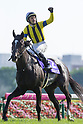 Horse Racing : Yushun Hinba 2017