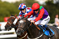 Winner of The Draintech Tankers Nursery Handicap Stakes  Sufficient (red cap) ridden by Jim Crowley and trained by Rod Millman during Twilight Racing at Salisbury Racecourse on 14th September 2018