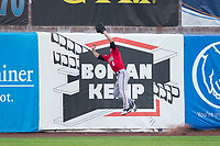 Billings Mustangs center fielder Drew Mount (8) catches a fly ball before colliding into the outfield wall during a Pioneer League game against the Ogden Raptors at Lindquist Field on August 17, 2018 in Ogden, Utah. The Billings Mustangs defeated the Ogden Raptors by a score of 6-3. (Zachary Lucy/Four Seam Images)