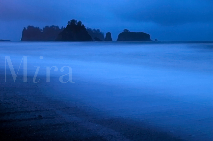 Offshore sea stacks at dusk, Rialto Beach, Olympic National Park, Olympic Peninsula, Clallam County, Washington, USA