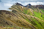 Bird Peak, viewed from Bird Ridge. Chuach State Park, Southcentral Alaska, Summer.