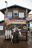 ALASKA, Homer, a guy who unloads and fillets halibut for Buttwhackers charters. Their tagline: We pack em, wack em, rack em and sack em!, the Homer Spit