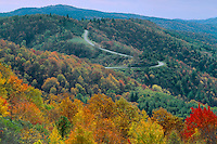 The Blue Ridge Parkway<br />   from near Low Gap<br /> Blue Ridge Mountains<br /> North Carolina