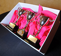 Promotional trophies on display during the Pink Batts Heartland Championship 2013 season launch at Waikanae RFC, Waikanae, New Zealand on Tuesday, 13 August 2013. Photo: Dave Lintott / lintottphoto.co.nz