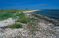 Solent Coastline, Pennington and Keyhaven, Hampshire, UK