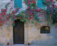 Tuscany, Italy   <br /> Vine covered wall with arched door and green shutters on the Piazza Della Vittoria in the ancient hilltown of Montepulciano in the Val d'Orcia