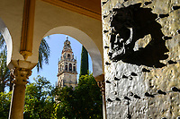 SPAIN, Cordoba, Mezquita, mosque and cathedral, brass gate with lion head as doorbell, bell tower and garden with orange trees