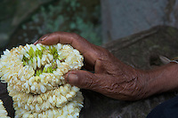 Caring Hands and Flowers Preah Khan Temple Siem Reap,Cambodia