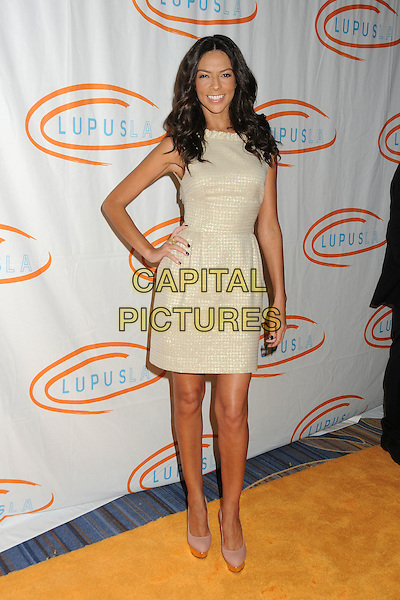 Terri Seymour.12th Annual Lupus LA Orange Ball held at the Beverly Wilshire Hotel, Beverly Hills, California, USA..May 24th, 2012.full length dress beige hand on hip.CAP/ADM/BP.©Byron Purvis/AdMedia/Capital Pictures.
