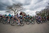 Peloton cornering.<br /> <br /> 53th Amstel Gold Race (1.UWT)<br /> 1 Day Race: Maastricht &gt; Berg en Terblijt (263km)