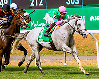 ELMONT, NEW YORK - OCT 7: Disco Partner #5, ridden by Irad Ortiz Jr., wins the Belmont Turf Sprint Invitational Stakes, at Belmont Park on October 7, 2017 in Elmont, New York. ( Photo by Sue Kawczynski/Eclipse Sportswire/Getty Images)