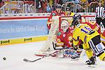 Jeremy Welsh (Krefeld Pinguine, Nr. 15) versucht, den Puck vor dem Tor von Mathias Niederberger (Duesseldorfer EG, Nr. 35) zur erkaempfen<br /> im DEL-Spiel der Duesseldorfer EG gegen die Krefeld Pinguine (06.03.2020). beim Spiel in der DEL, Duesseldorfer EG (rot) - Krefeld Pinguine (gelb).<br /> <br /> Foto © PIX-Sportfotos *** Foto ist honorarpflichtig! *** Auf Anfrage in hoeherer Qualitaet/Aufloesung. Belegexemplar erbeten. Veroeffentlichung ausschliesslich fuer journalistisch-publizistische Zwecke. For editorial use only.