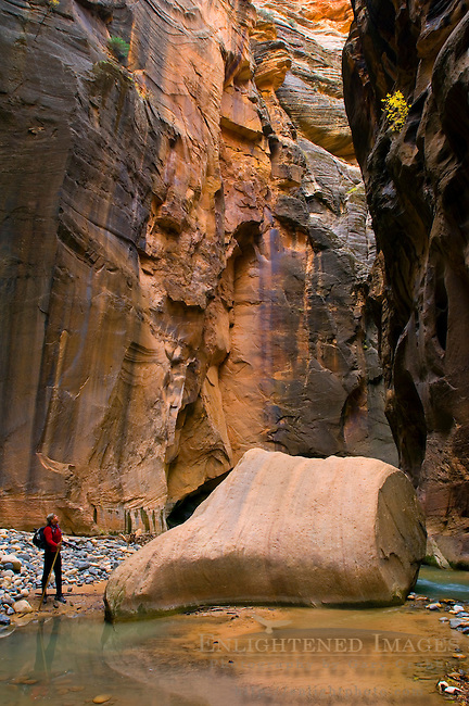 Hiker in the Virgin River Narrows, Zion National Park, Utah