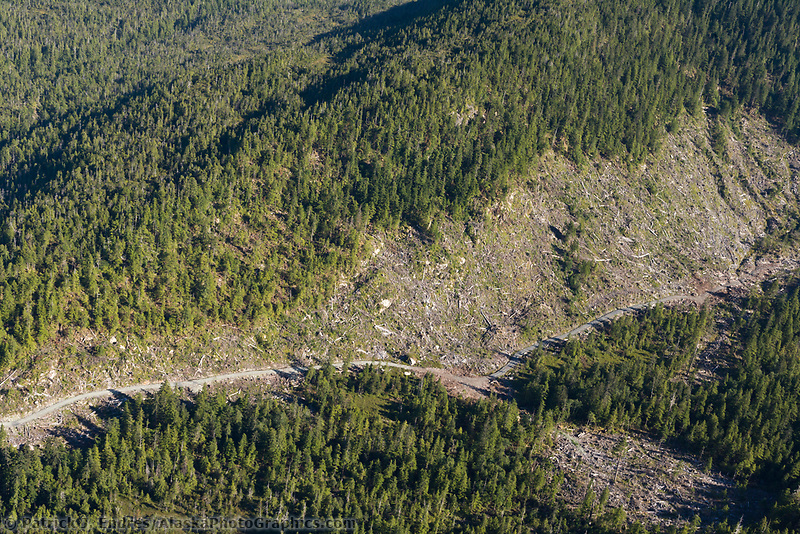 Clear cut logging on Revillagigedo Island, Tongass National Forest, southeast, Alaska.