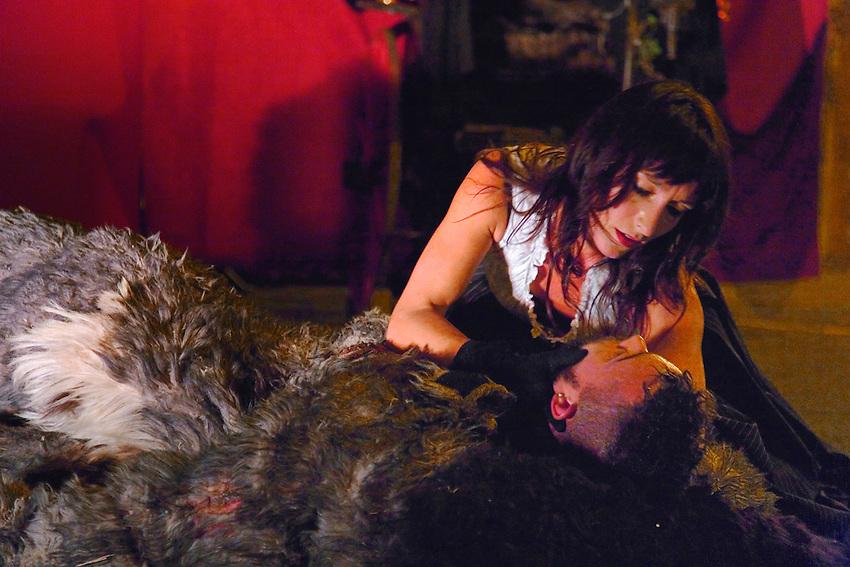 http://theatreduvertige.net/