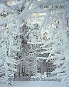 Marek, CHRISTMAS LANDSCAPES, WEIHNACHTEN WINTERLANDSCHAFTEN, NAVIDAD PAISAJES DE INVIERNO, photos+++++,PLMPB0092,#xl#