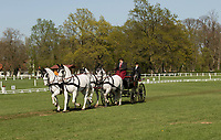 International horse Carriage dressage at Kladruby n. Labem 2018. Driver with his white four-in-hand horses during the competiton that takes place once a year.
