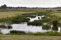 21.7.2020 Wetland in the Lincolnshire Fens. Once arable land this area has been returned to wetland in a project to return the land to more traditional fenland landscape with shallow meres<br />  ©Tim Scrivener Photographer 07850 303986<br />      ....Covering Agriculture In The UK.