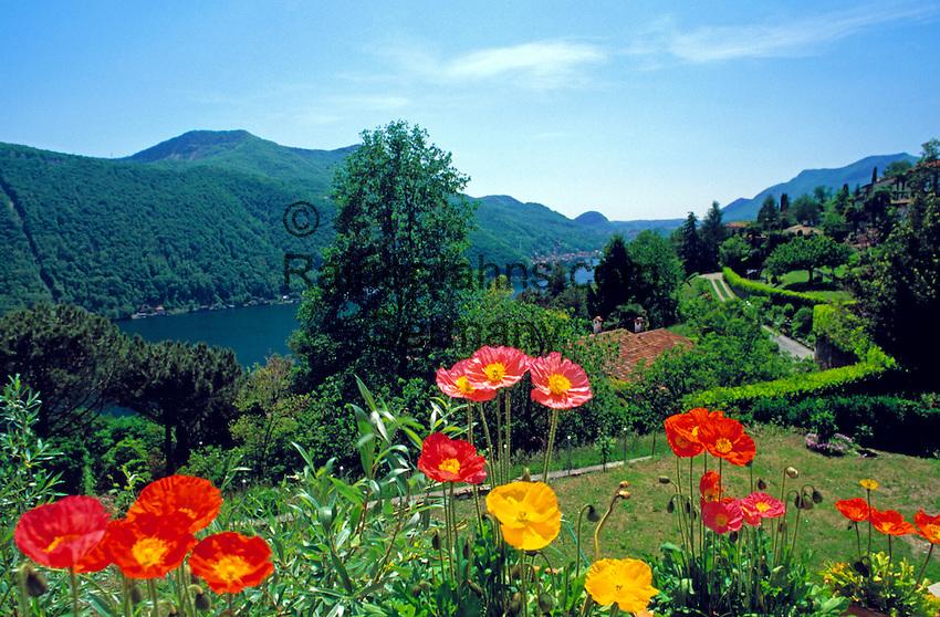 CHE, Schweiz, Tessin, Blick von Vico Morcote ueber den Luganer See | CHE, Switzerland, Ticino, View from Vico Morcote across Lago Lugano
