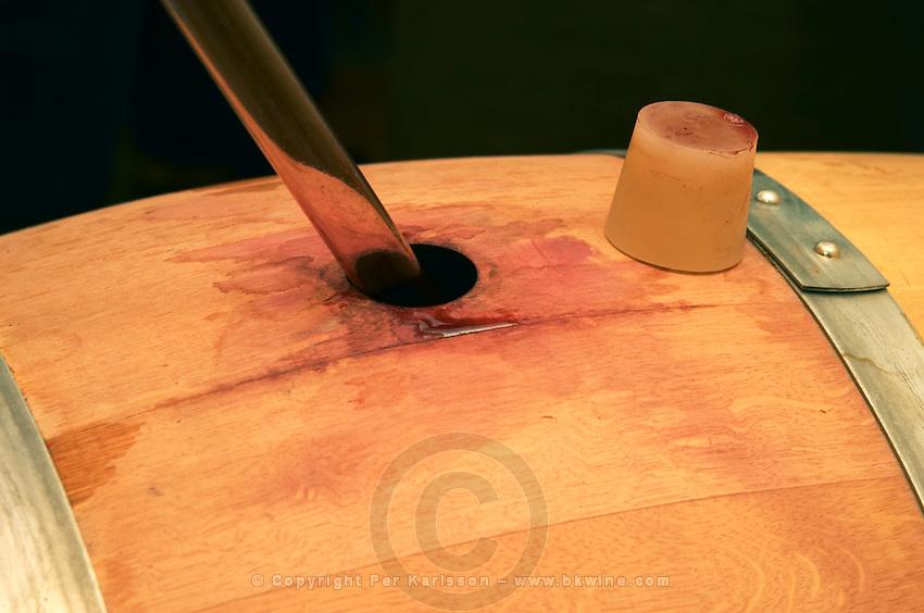 A wine sampling pipette taking a sample from a barrel, silicon bung plug - Chateau La Grave Figeac, Saint Emilion, Bordeaux