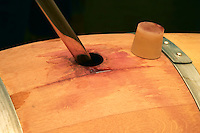 A wine sampling pipette taking a sample from a barrel, silicon bung plug - Chateau La Grave Figeac, Saint Emilion, Bordeaux