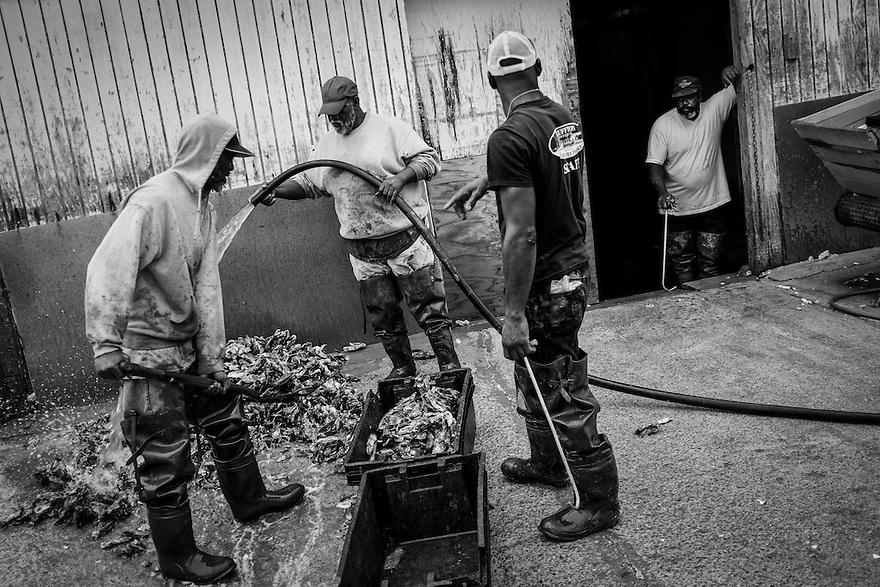 Oystermen wash the day's catch outside of the Bluffton Oyster Company located on the May River near Hilton Head Island.