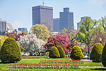 the Public Garden, Boston, Massachusetts, USA