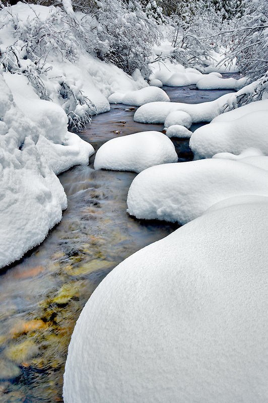 Snow covered stream on Bull Run Creek. Elkhorn Drive National Scenic Byway. Oregon