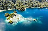 aerial view of Raja Ampat Islands, West Papua, Indonesia, Pacific Ocean