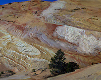 Various hues, shapes, lines and rock formations formed through erosion make up the landscape at Yellow Rock at The Grand Staircase Escalante National Monument, Utah