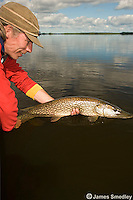 Fisherman releasing a huge northern pike