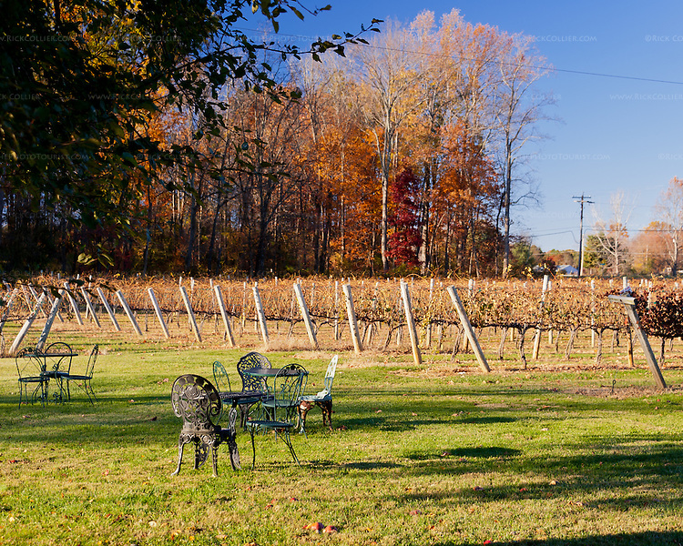 Tables and chairs are dotted about the lawn at Gray Ghost Vineyards, offering quiet places to sit and enjoy the vineyard views.