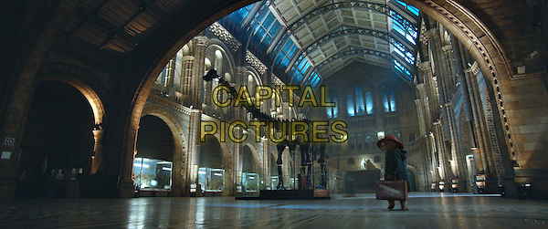 Paddington (voice of Ben Whishaw)<br /> in Paddington (2014) <br /> *Filmstill - Editorial Use Only*<br /> CAP/NFS<br /> Image supplied by Capital Pictures