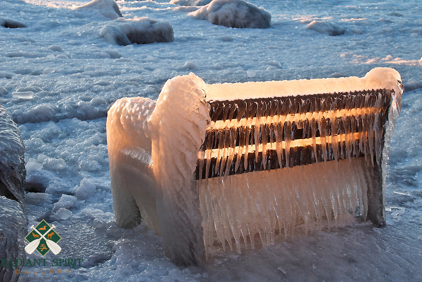 &quot;Winter's Throne&quot;<br />