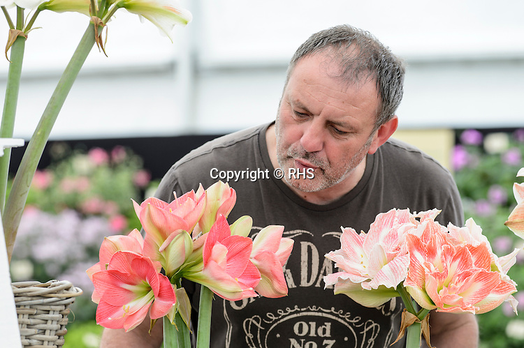 Rob Evan from Pheasant Acre Plants in the Floral Marquee at the RHS Show Cardiff 2016.