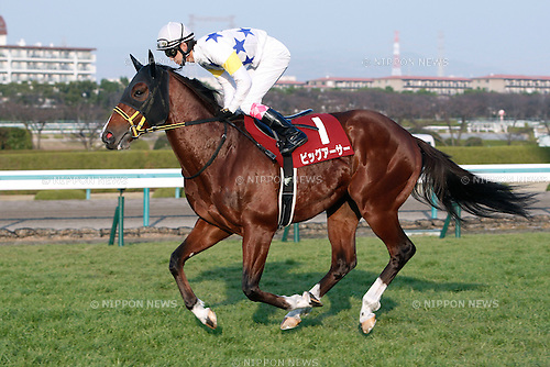 Big Arthur (Kota Fujioka),<br /> DECEMBER 26, 2015 - Horse Racing :<br /> Big Arthur ridden by Kota Fujioka before the Hanshin Cup at Hanshin Racecourse in Hyogo, Japan. (Photo by Eiichi Yamane/AFLO)