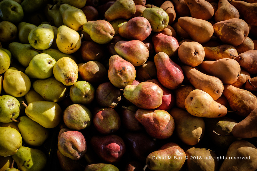 10.2.17 - Many Pairs of Pears....
