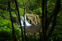 Beaver Falls, Clallam County, Olympic National Forest, Washington, US